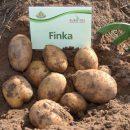 finka_1
